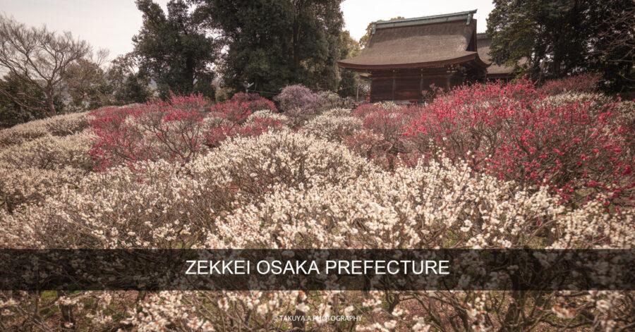絶景まとめ 大阪府の絶景スポット