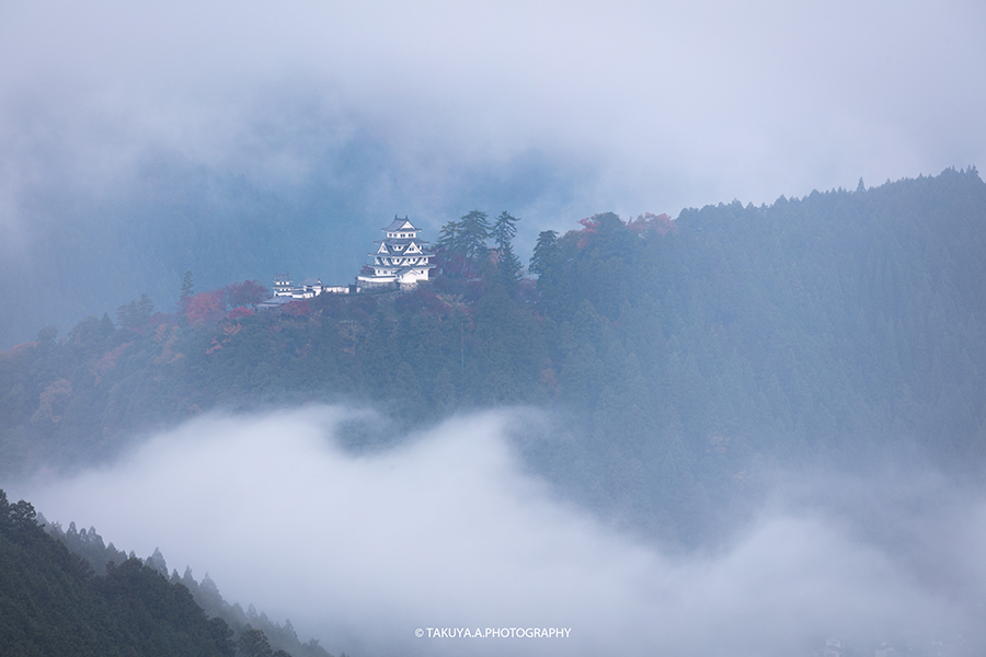 岐阜県の絶景 郡上八幡城の雲海と紅葉