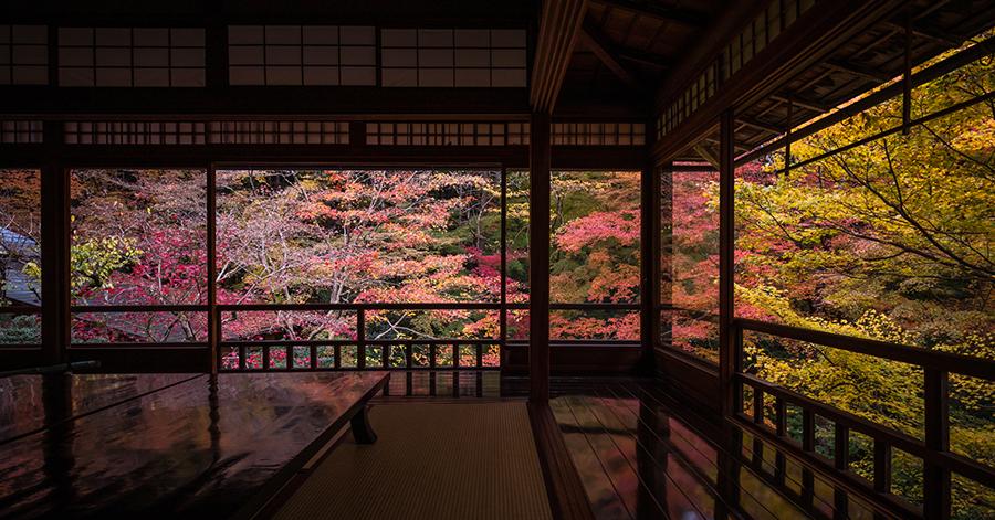 京都府の絶景 瑠璃光院の紅葉