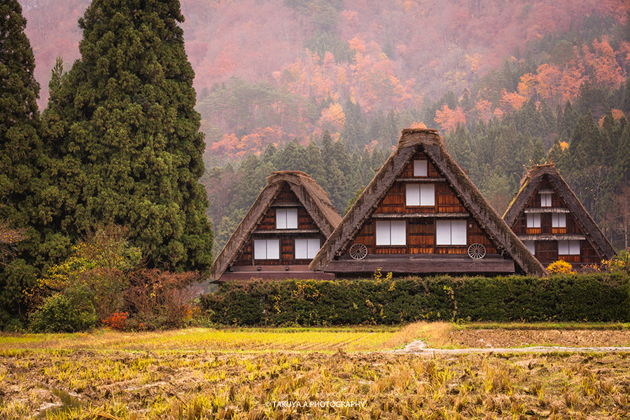 岐阜県の絶景 白川郷の紅葉 撮影スポット