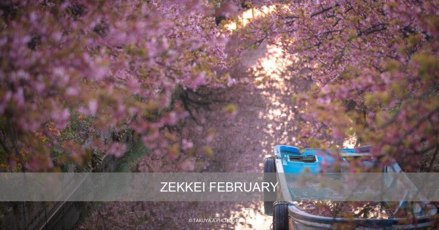 絶景まとめ 2月にオススメの被写体・絶景スポット