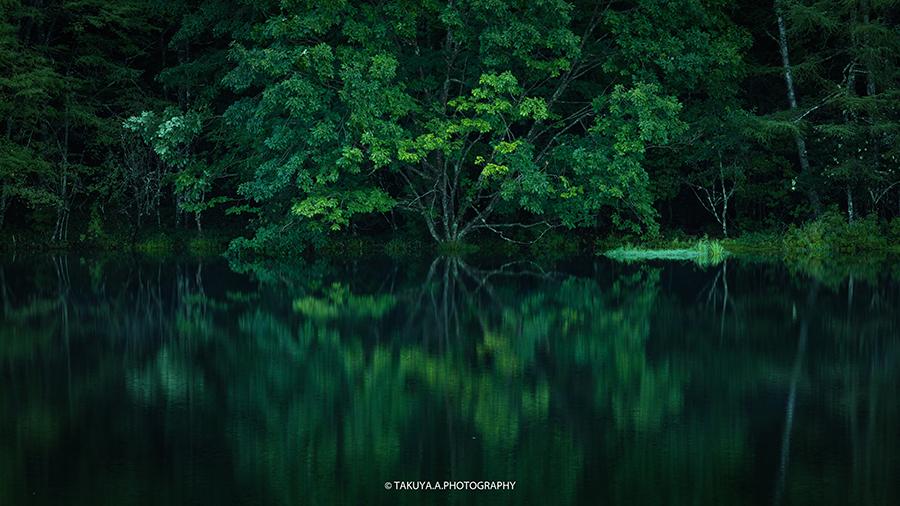 長野県の絶景 御射鹿池の深緑