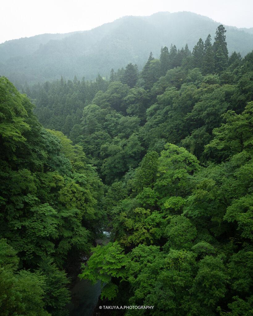 岐阜県の絶景 付知峡攻橋の新緑