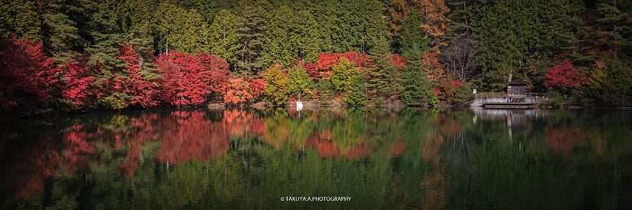 山梨県の絶景 南伊奈ケ湖の紅葉
