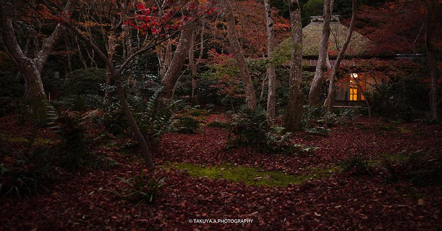 京都府の絶景 祇王寺の散紅葉