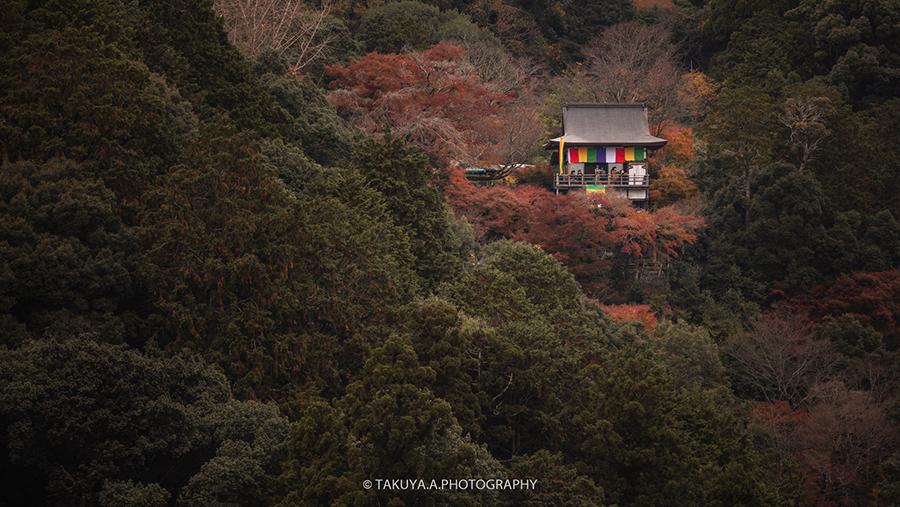 京都府の絶景 嵐山公園亀山地区展望台の紅葉
