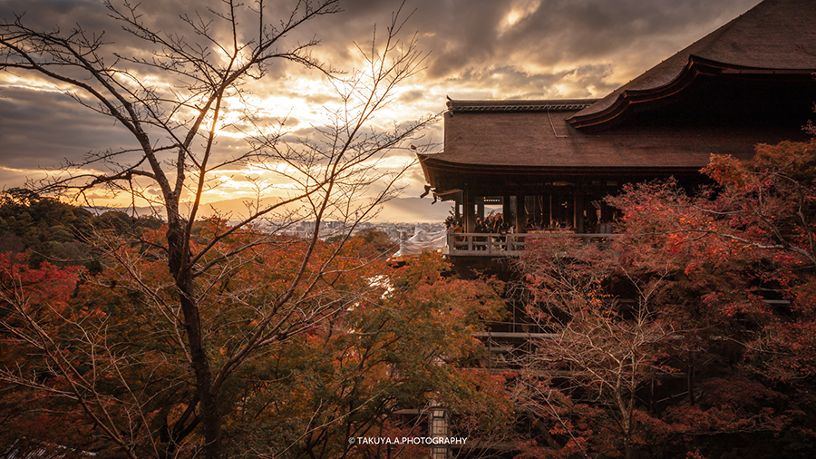 京都府の絶景 清水寺の紅葉
