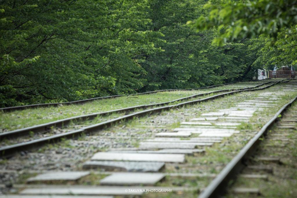京都府の絶景 蹴上インクラインの新緑