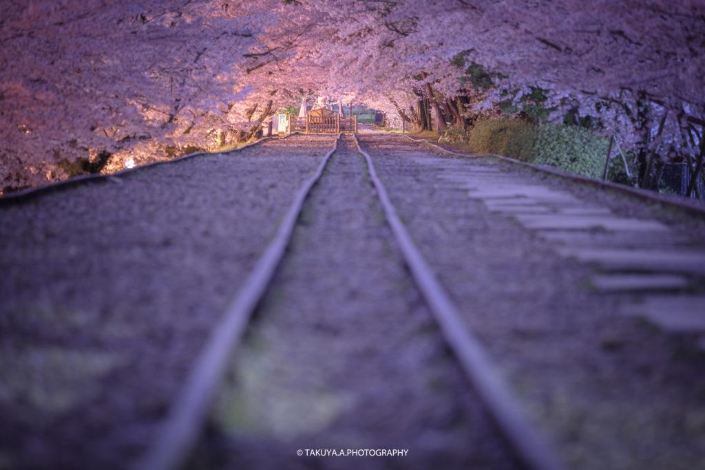 京都府の絶景 蹴上インクラインの桜