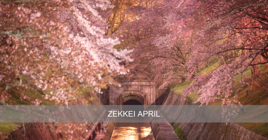 絶景まとめ 4月にオススメの被写体・絶景スポット