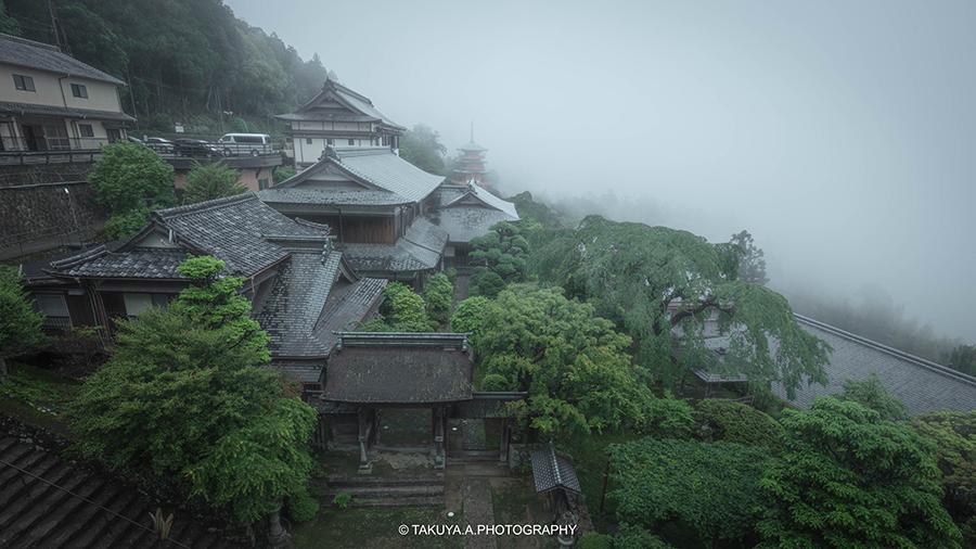 和歌山県の絶景 熊野那智大社の新緑