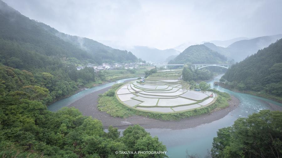 和歌山県の絶景 あらぎ島の新緑