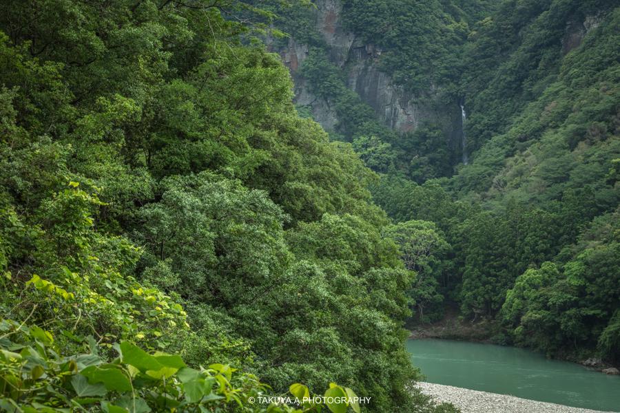 和歌山県の絶景 八草の滝の新緑